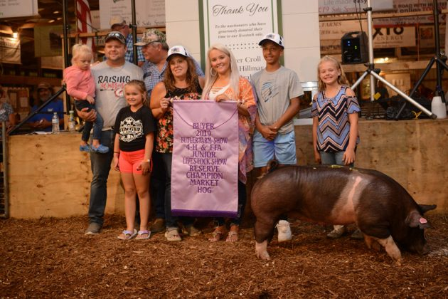 Butler County Fair Reserve Champion Hog