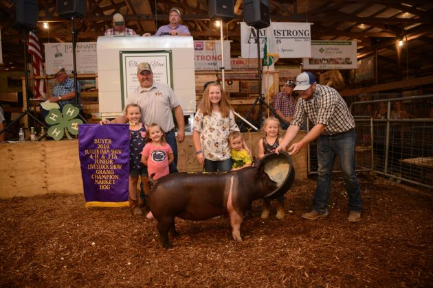 Butler County Fair Grand Champion Hog