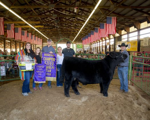 2019 Portage County Fair Reserve Champion Steer