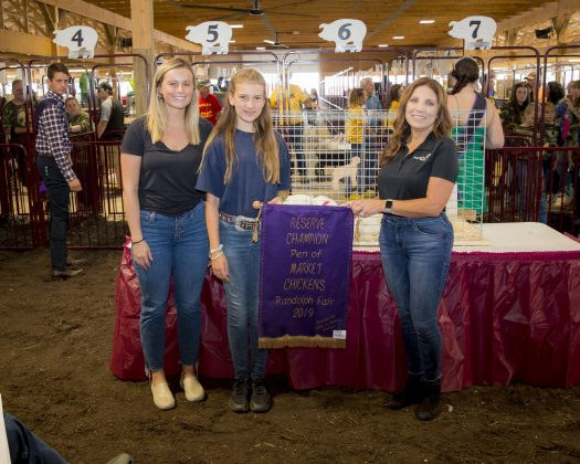2019 Portage County Fair Reserve Champion Chickens