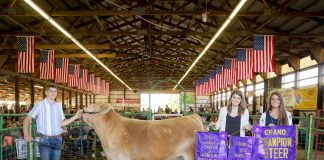 2019 Portage County Fair Grand Champion Steer