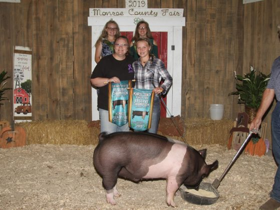 Monroe County Fair Reserve Champion Hog
