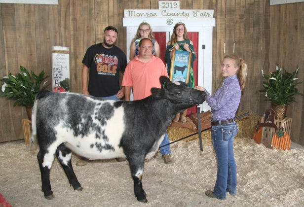 Monroe County Fair Reserve Champion Feeder Heifer