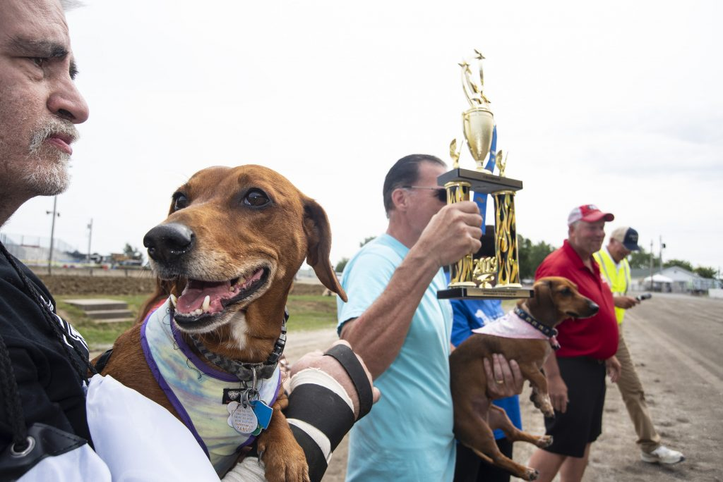 Canfield Fair Welcomes Dogs With Its First Wiener Dog