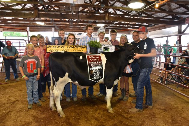 Jefferson County Fair Reserve Champion Dairy Beef Feeder
