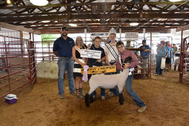 Jefferson County Fair Reserve Champion Lamb