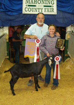 Canfield Fair Reserve Champion Dairy Goat