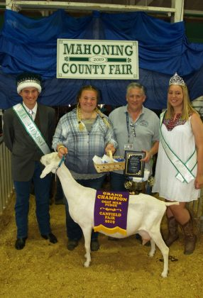 Canfield Fair Grand Champion Goat Milk Fudge