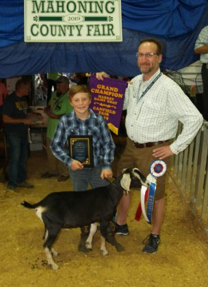 Canfield Fair Grand Champion Dairy Goat