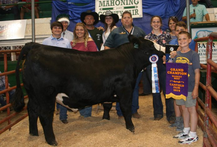 Canfield Fair Grand Champion Beef