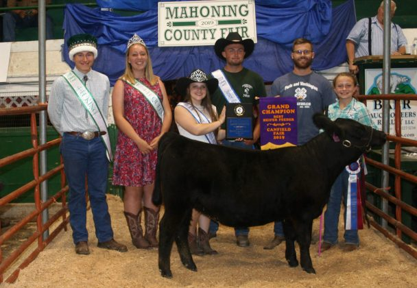 Canfield Fair Grand Champion Beef Heifer Feeder