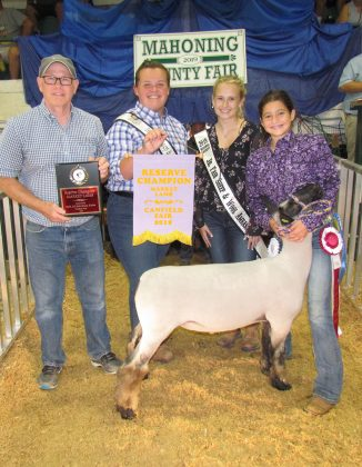 Canfield Fair Reserve Champion Lamb
