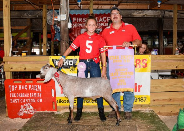 Stark County Fair Reserve Champion Dairy Goat