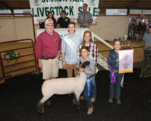 Geauga County Fair Reserve Champion Lamb