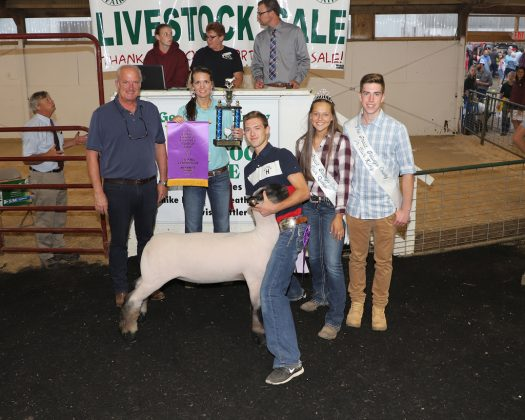 Geauga County Fair Grand Champion Lamb