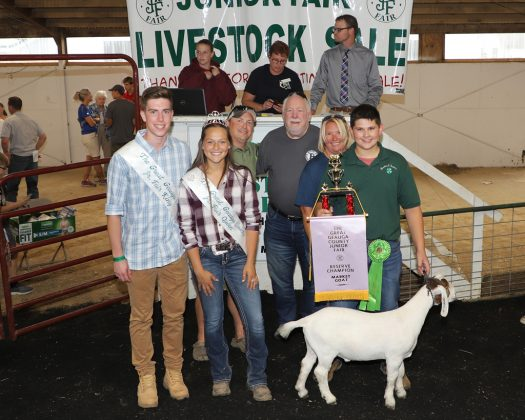 Geauga County Fair Reserve Champion Goat