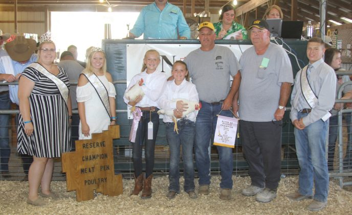 Noble County Fair Reserve Champion Chickens