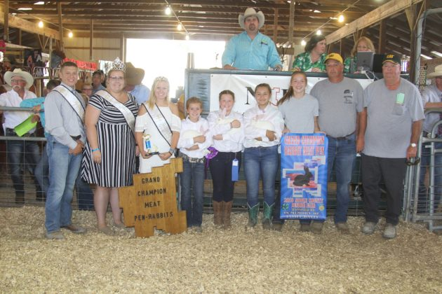 Noble County Fair Grand Champion Rabbits