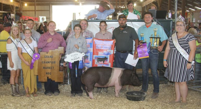 Noble County Fair Grand Champion Hog