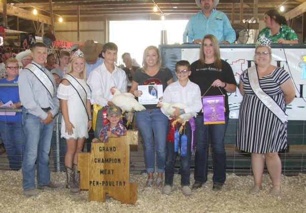 Noble County Fair Grand Champion Chickens