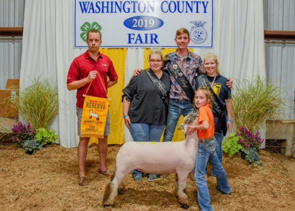 Washington County Fair Reserve Champion Lamb