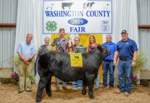 Washington County Fair Grand Champion Steer