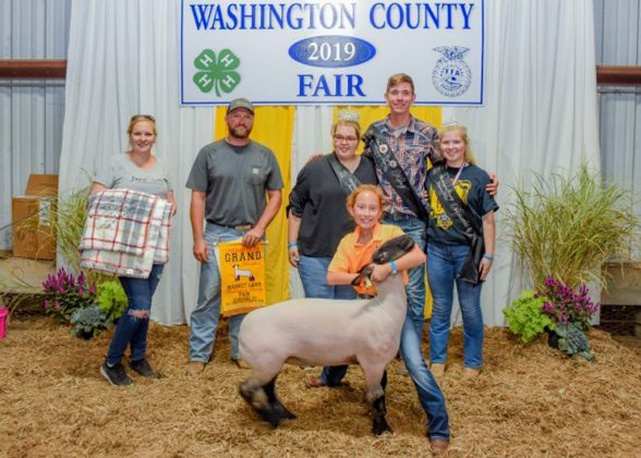 Washington County Fair Grand Champion Lamb