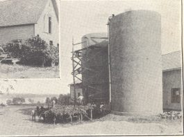 Navy Dairy Farm