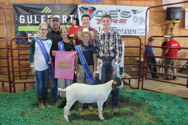 Belmont County Fair Reserve Champion Goat