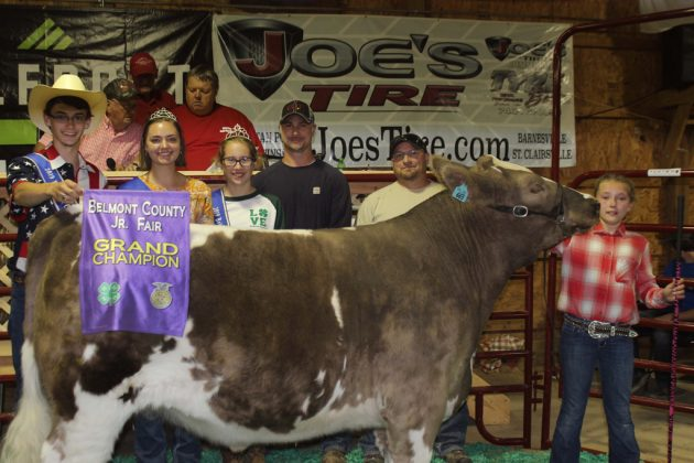 Belmont County Fair Grand Champion Steer