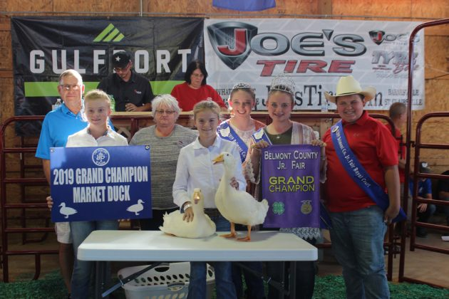 Belmont County Fair Grand Champion Ducks