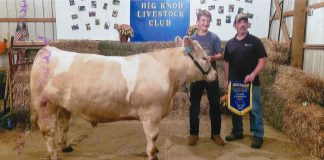 Big Knob Grange Fair Grand Champion Steer