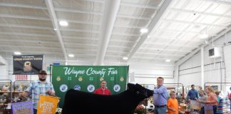Wayne County Fair Grand Champion Steer