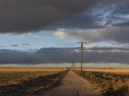 telephone lines on a country road