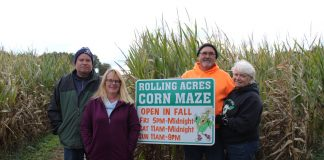 siblings run corn maze