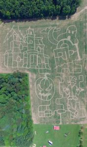 spooky corn maze seen from above