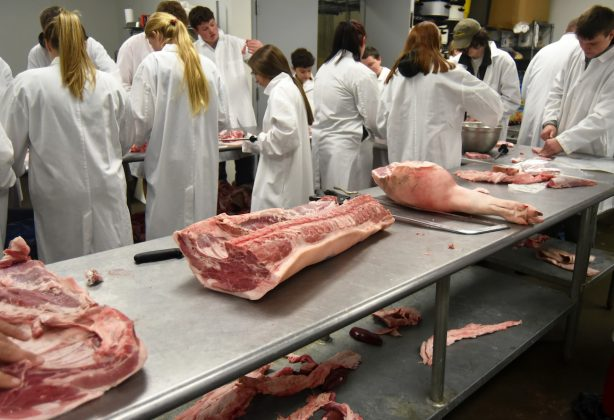 pork cuts on table at Tyler HS