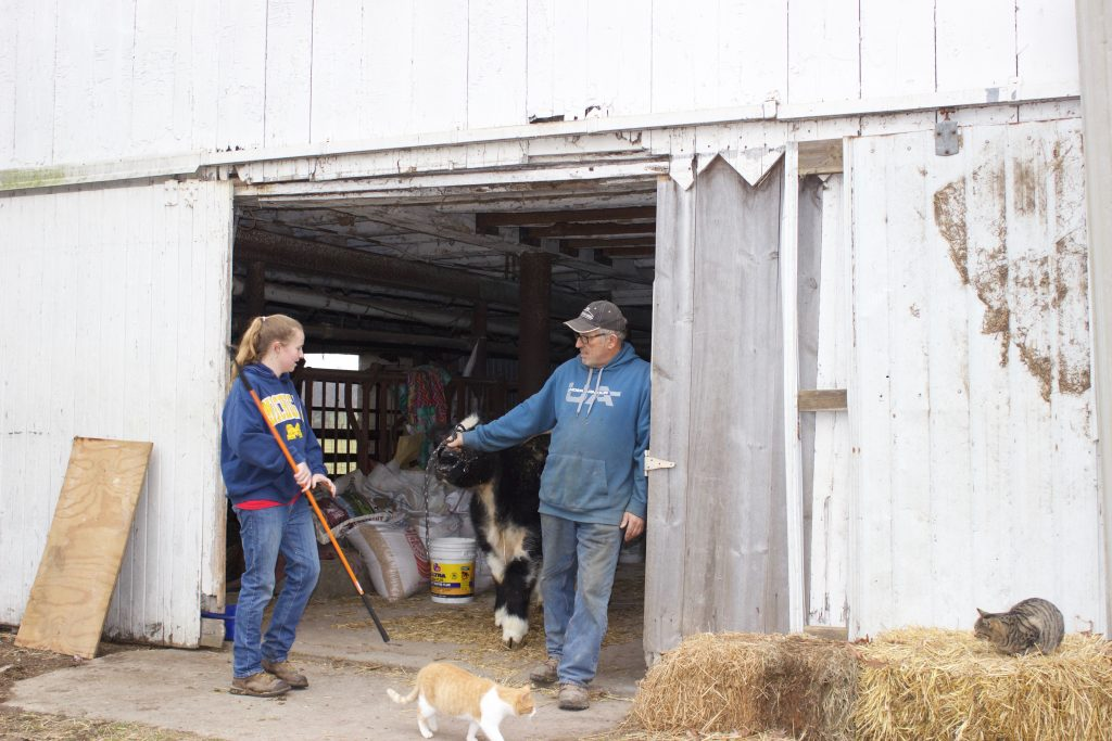 A man hands the halter for a market steer to a girl.