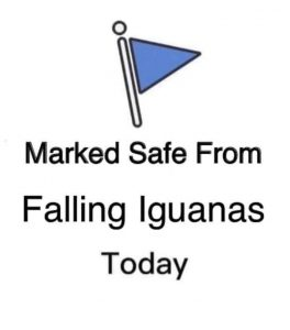 marked safe from falling iguanas