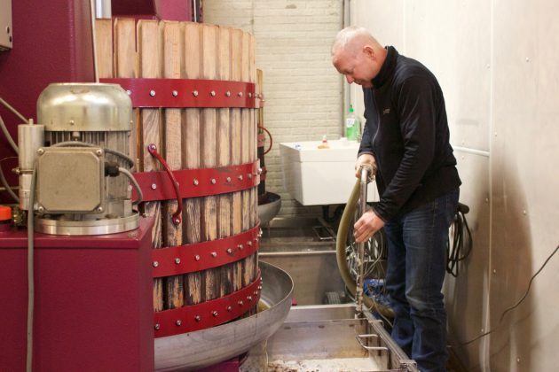 Vineyards manager Gene Sigel siphons juice for ice wine, Jan. 22, from a bin into another.