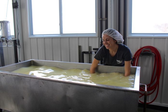 woman making cheese