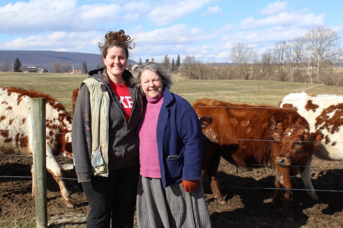 women in front of cows