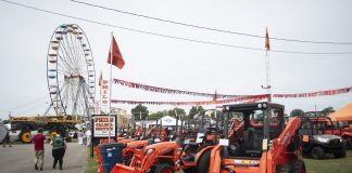 canfield fair