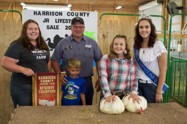 The reserve champion market chickens.