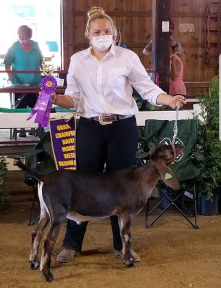 Grand Champion Dairy Goat