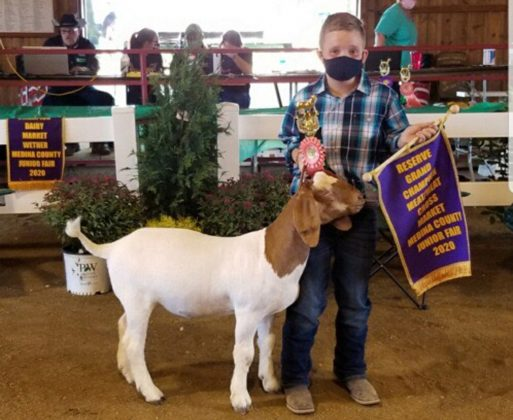 Reserve Champion Meat Goat