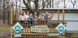 family stands on deck at tree farm
