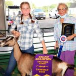 Grand Champion Goat Milk Fudge