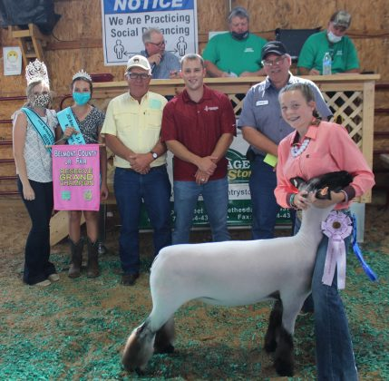 Reserve Champion Lamb