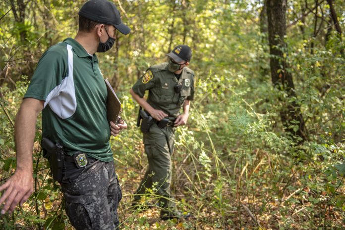 Two wildlife officers walk through the woods.
